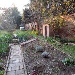 L'orto botanico dell'Abbazia di Pomposa